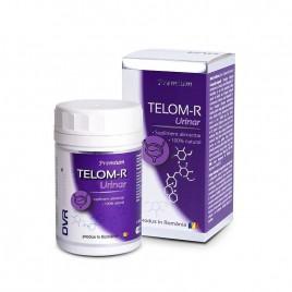Capsule Telom-R Urinar 120cps DVR Pharm