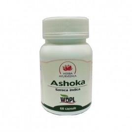 Ashoka Capsule 500mg 60cps Herba Ayurvedica