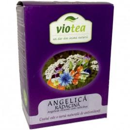 Ceai din Radacina de Angelica 50g Viotea