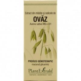 Produs Gemoterapic - Ovaz 50ml Plantextrakt