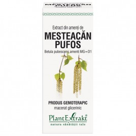 Produs Gemoterapic – Amenti de Mesteacan Pufos 50ml Plantextrakt