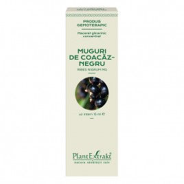 Extract Gemoterapeutic Concentrat Coacaz Negru 15ml Plantex