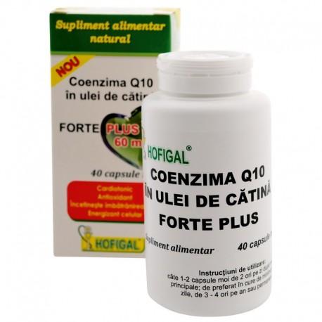 Capsule Moi Coenzima Q10 in Ulei de Catina Forte Plus 40cps Hofigal