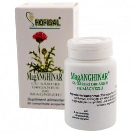 MagAnghinar cu Saruri Organice de Magneziu 60cpr Hofigal
