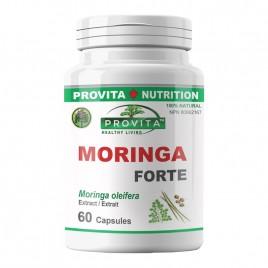 Moringa Forte 60cps Provita Nutrition