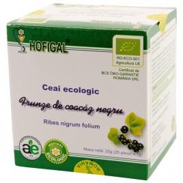 Ceai din Frunze de Coacaz Negru Bio 25dz Hofigal