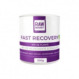 Fast Recovery – Mix de Plante Bio 200g Rawboost