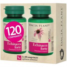Echinacea Forte Promo 1 1 - 60cmp Dacia Plant