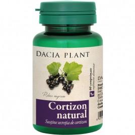 Cortizon Natural 60cmp Dacia Plant