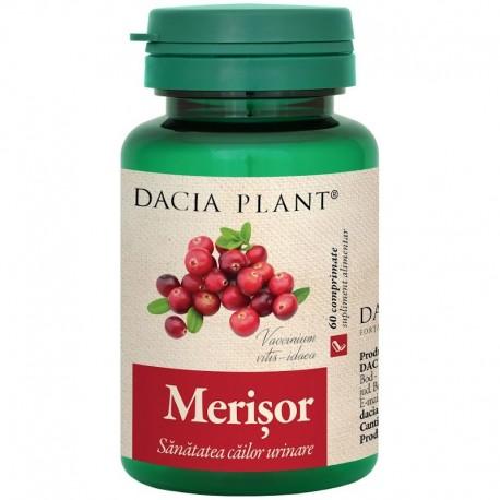 Merisor 60cmp Dacia Plant