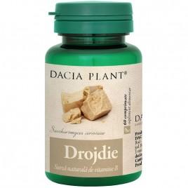 Drojdie 60cmp Dacia Plant