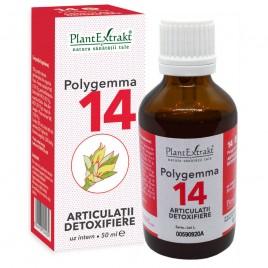 Polygemma Nr.14 Articulatii-Detox 50ml Plantextrakt