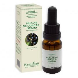 Extract Gemoterapeutic Concentrat Coacaz Negru 15ml Plantex