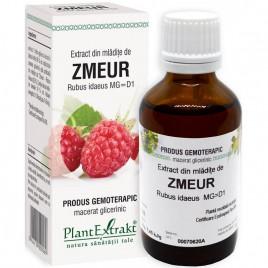 Extract Gemoterapeutic Zmeur Mlad.50ml Plantextrak