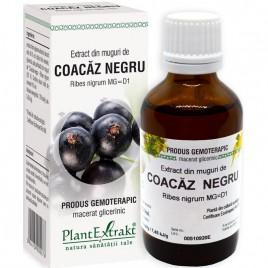 Extract Gemoterapeutic Coacaz Negru 50ml Plantextr