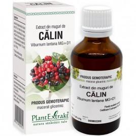 Extract Gemoterapeutic Calin Mug.50ml Plantextrakt