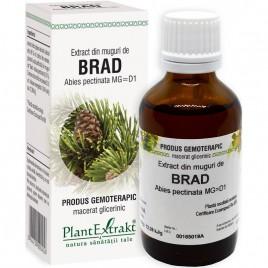 Extract Gemoterapeutic Brad Mug.50ml Plantextrakt