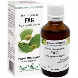Extract Gemoterapeutic Fag Mug.50ml Plantextrakt