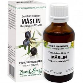 Extract Gemoterapeutic Maslin Mlad.50ml Plantextra