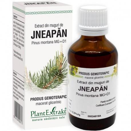 Extract Gemoterapeutic Jneapan Mug.50ml Plantextra