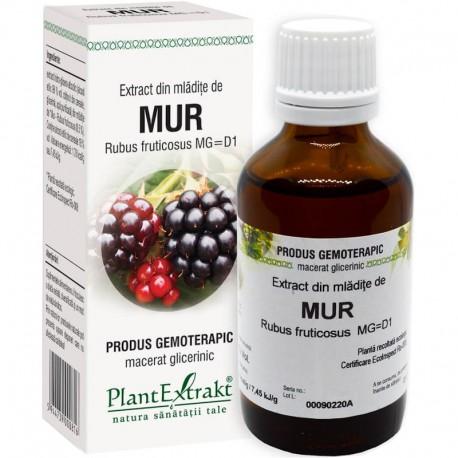 Extract Gemoterapeutic Mur Mlad.50ml Plant Extrakt