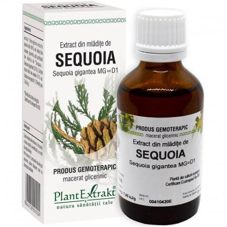 Extract Gemoterapeutic Sequoia Mlad.50ml Plantextr