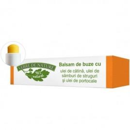 Balsam Buze Catina-Ulei Samburi Struguri 4.8g Verre De Nature