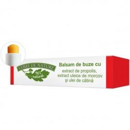 Balsam Buze Propolis-Morcov-Catina 4.8g Verre De Nature