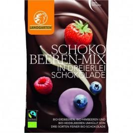 Fructe Padure Mix Ciocolata - Eco 50g Landgarten