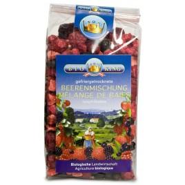 Mix Fructe Liofilizate Bio 40g Bio King