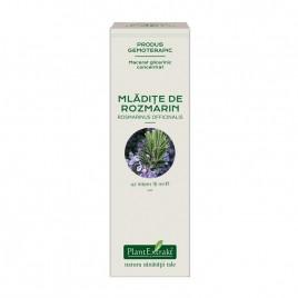 Extract Gemoterapeutic Concentrat Rozmarin Mladite 15ml Plantextrakt