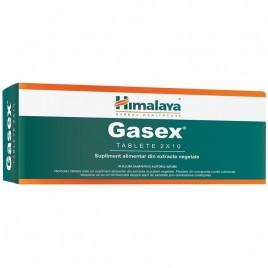 Gasex 10tb Himalaya