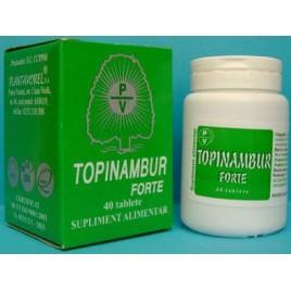 Topinambur Forte 40tb Plantavorel