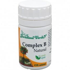 Complex B Natural - 60cps Paradisul Verde