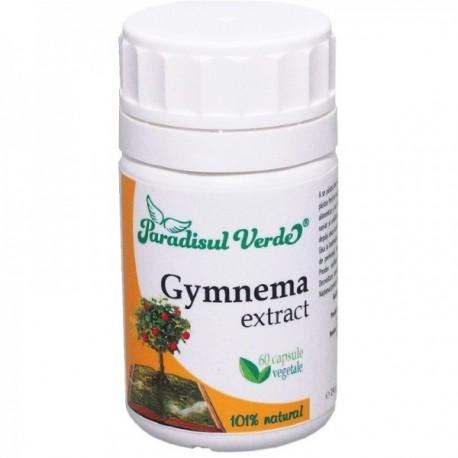 Gymnema - 60cps Paradisul Verde