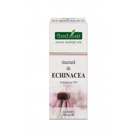 Tinctura Echinacea 50ml Plantextrakt