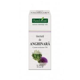 Tinctura Anghinara 50ml Plantextrakt