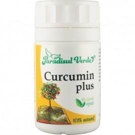 Curcumin Plus - 60cps Paradisul Verde