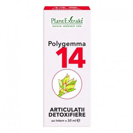 Polygemma Nr.14 Articulatii-Detox 50ml P