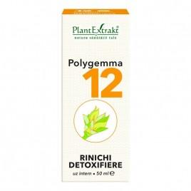 Polygemma Nr.12 Rinichi-Detox 50ml Plant