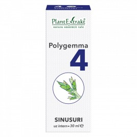 Polygemma Nr.4 Sinusuri 30ml Plantextrakt