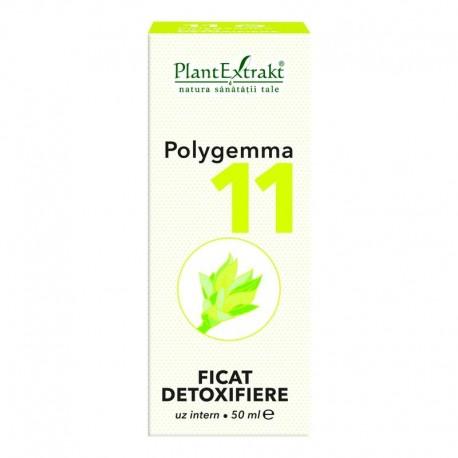 Polygemma Nr.11 Ficat-Detoxifiere 50ml Plantextrakt
