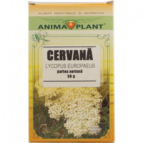 Ceai Cervana 50g Anima Plant