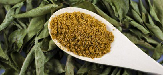 CURRY (Murraya koenigii) pulbere de curry sau pudra de curry – condimentul inca necunoscut