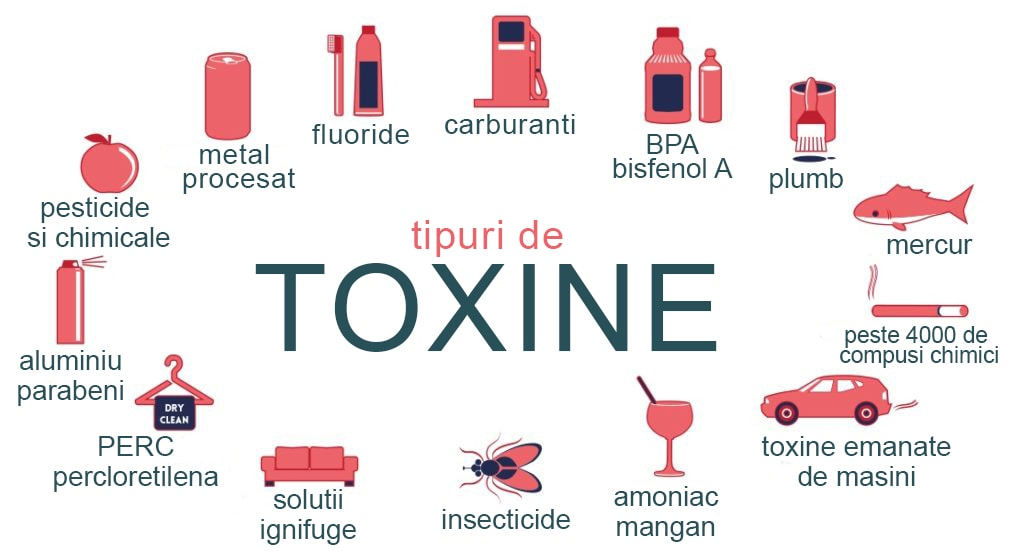 detoxifierea celulelor