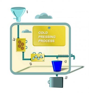 Obtinerea uleiului presat la rece