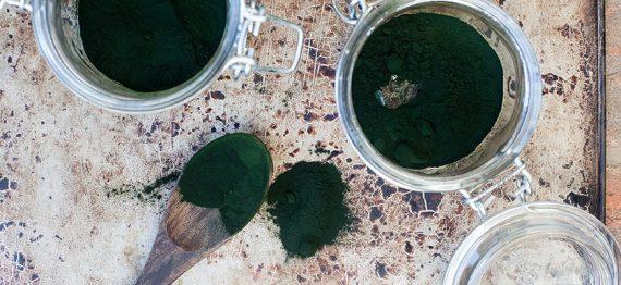 Chlorella - energie verde