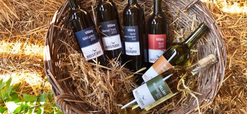 Vin biodinamic - ce inseamna?