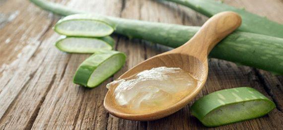 Ingrijirea parului acasa – retete homemade cu Aloe Vera