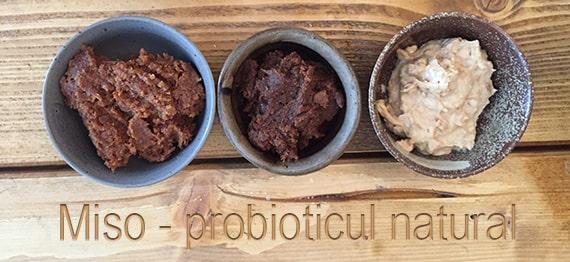 retete cu miso probiotic natural